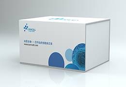 上新!新版尚恩生物细胞产品包装盒来了~