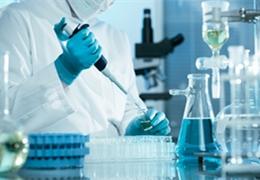 胎牛血清在细胞培养中的6大作用?
