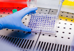 动物细胞分离培养无菌操作前的准备工作